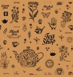 seamless pattern on theme tea vector image