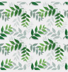 tropical leaves isolate on white background vector image