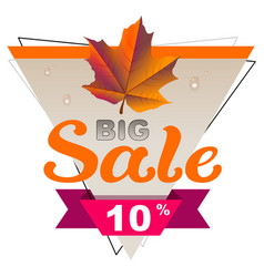 autumn big sale 10 percent discount coupon yellow vector image