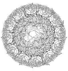 Contoured Line flowers vector image