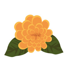 Cute flower plant icon vector