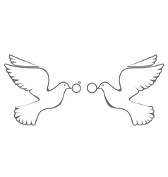Doves rings vector