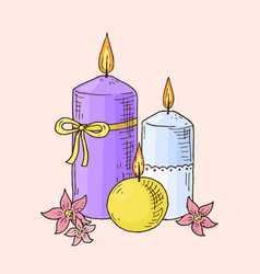 hand drawn candles with flowers vector image