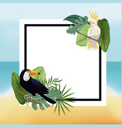 Poster tropical leaves palm beach background vector