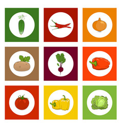 Round icons vegetables on colorful background vector