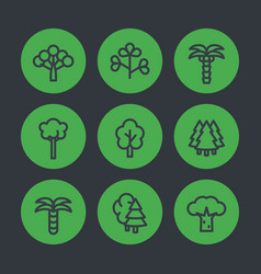 Trees line icons palms firs baobab eucalyptus vector
