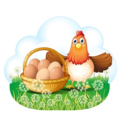 A hen with eggs in a basket vector image vector image