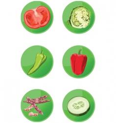 icons veggies vector image vector image