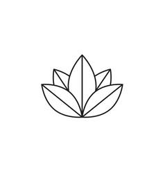 lotus meditation icon vector image