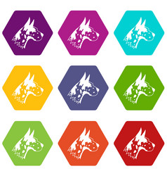 great dane dog icon set color hexahedron vector image