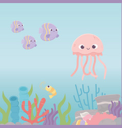 jellyfish fishes shrimp life coral reef cartoon vector image