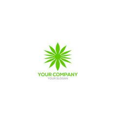 Sun cannabis logo design vector