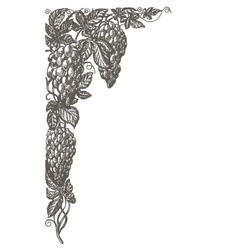 grapevine logo design template frame or vector image