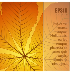 Yellow leaf vector image