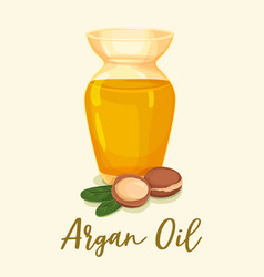 argan oil in bottle near leaves and tree nuts vector image