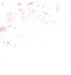 Beautiful pink cherry blossom EPS 10 vector image