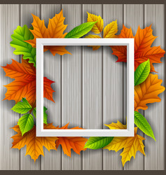 Box frame autumn leaves wood background vector
