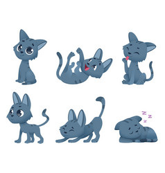 cute baby cats funny little domestic animals toy vector image