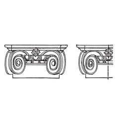 Ionic capital chapiter forms the topmost member vector