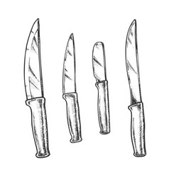knives metallic meal kitchenware monochrome vector image