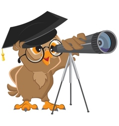 Owl astronomer looking through a telescope vector image