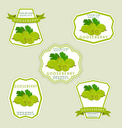 The theme gooseberry vector