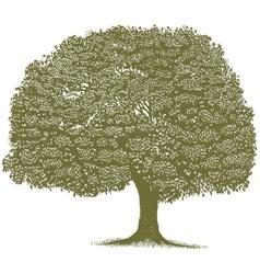 Woodcut Tree vector