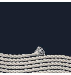 Stylish background with marine rope vector image vector image