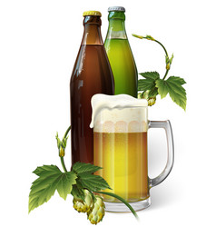 beer mug hops two beer bottles vector image