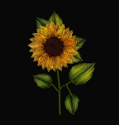 colorful sunflower plant embroidery in black vector image