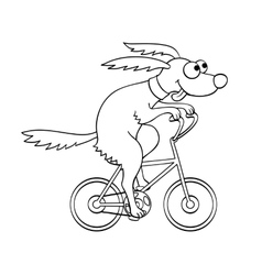 Cute dog riding a bicycle vector image