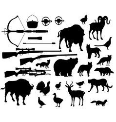 Hunting sport animals and birds shooting items vector