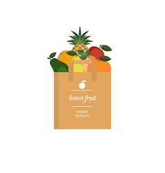 Paper bag with fresh fruit vector image