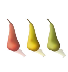 set of colorful pears vector image