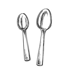 spoons metallic kitchenware monochrome vector image