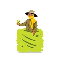Tea picker cartoon vector