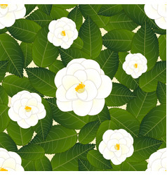 White camellia flower on ivory beige background vector