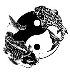 Ying yang symbol with koi fishes vector