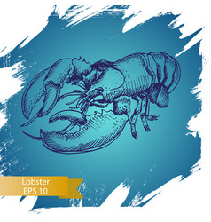 sketch - lobster hand drawn vector image