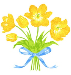 Tulips bouquet with blue ribbon vector image