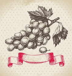 Wine vintage background with grapes vector image