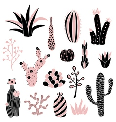 pink cacti 2 vector image vector image