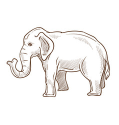 elephant animal standing side view hand drawn vector image