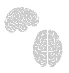 human brain outline vector image