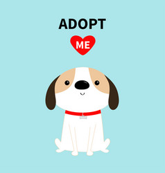 Adopt me dog sitting red collar white puppy pooch vector