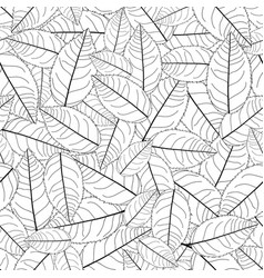 Camellia leaves outline on white background vector