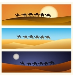 Caravan of camels in desert vector