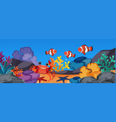 Clownfish and crab under the ocean vector