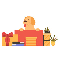 cute happy dog is sitting in gift box on white vector image