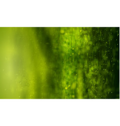 green background with bokeh absract warm nature vector image